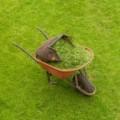 Prawidłowa pielęgnacja trawnika - Spadek pielęgnacja trawników